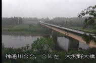 今朝は小雨