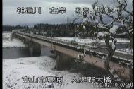 富山の桜開花予想