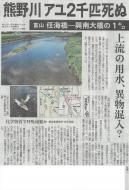 熊野川のアユ